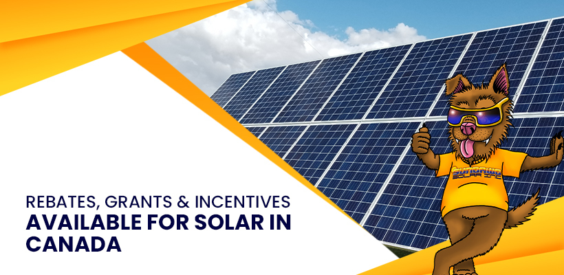 Rebates, Grants & Incentives Available For Solar In Canada